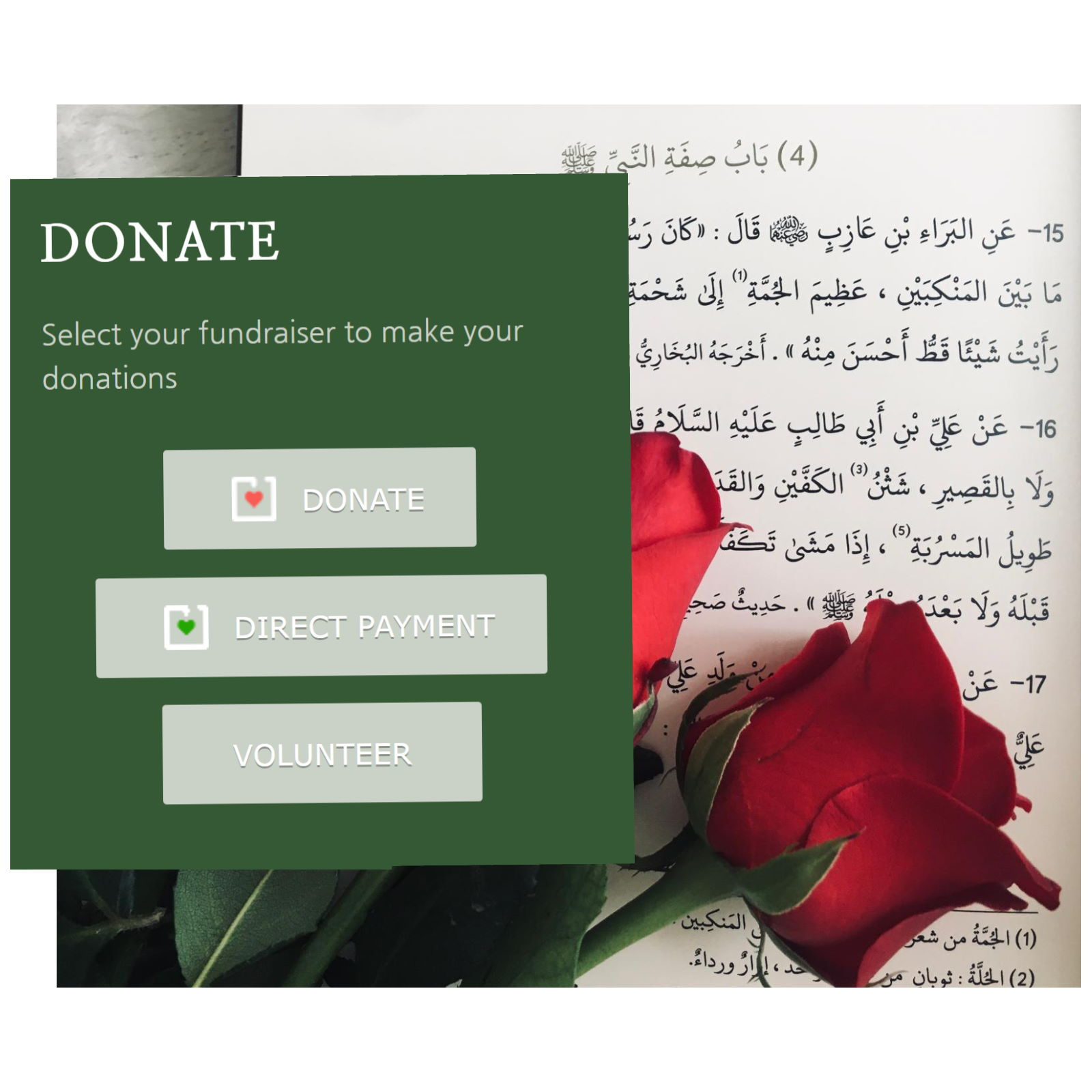 Read more about the article Donate
