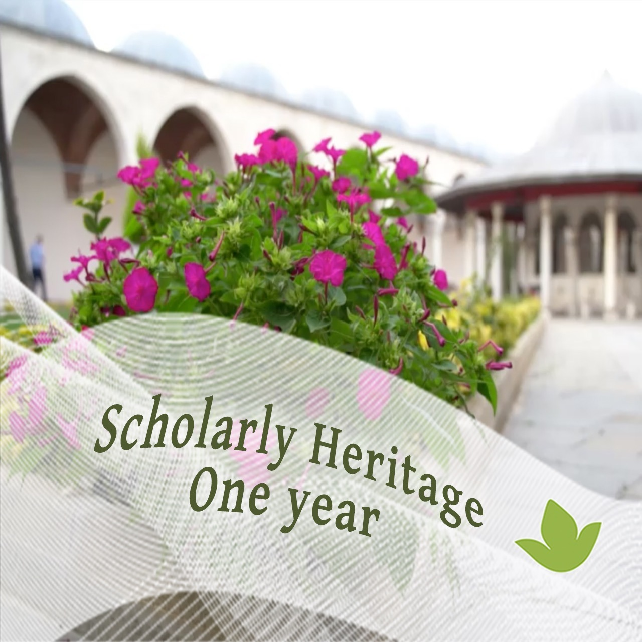 Read more about the article Newsletter No. 2 (2021) – One year with Scholarly Heritage