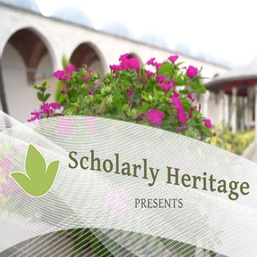 One year with Scholarly Heritage